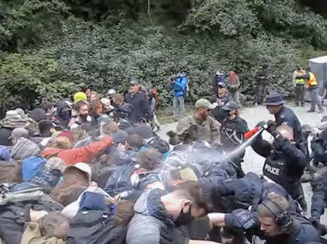 RCMP officers can be seen using pepper spray on Fairy Creek old-growth protesters on Saturday in online videos. Photo YouTube screen shot