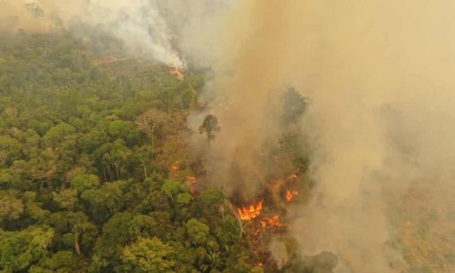 A fire burning in Porto Velho, Brazil, one of the world's oldest and most diverse tropical ecosystems. Photograph: Michael Dantas/WWF/PA