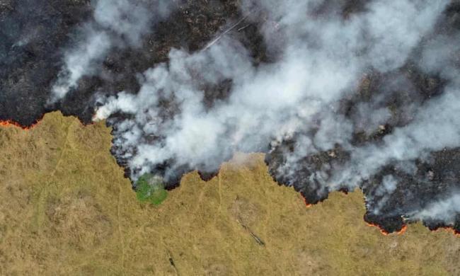 Deforestation in the Amazon jungle, Brazil, 2019. Photograph: Ueslei Marcelino/Reuters