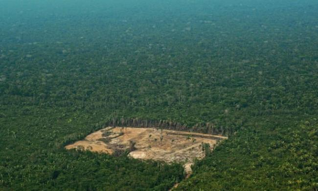 Deforestation in the western Amazon region of Brazil. Photograph: Carl de Souza/AFP/Getty Images