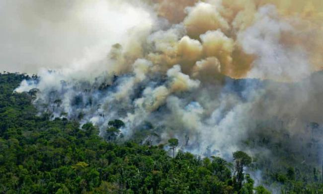 The study found fires produced about 1.5bn tonnes of CO2 a year, with forest growth removing 0.5bn tonnes. The 1bn tonnes left in the atmosphere is equivalent to the annual emissions of Japan. Photograph: Carl de Souza/AFP/Getty Images