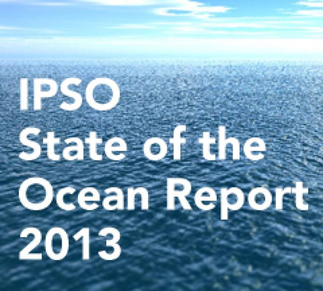 State of the Ocean Report 2013