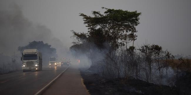 Trucks drive alongside scorched fields on the BR-163 highway in the state of Mato Grosso, Brazil, on Aug. 23, 2019. Photo: Leo Correa/AP