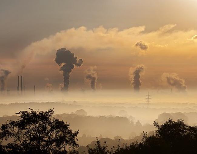 Carbon Concentration