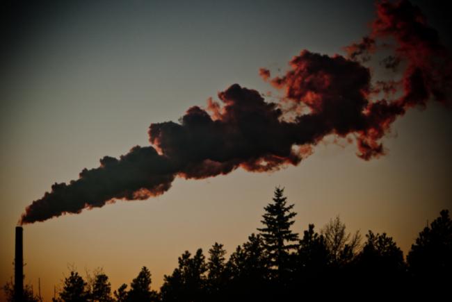 Alberta, Canada. kris krüg / Flickr