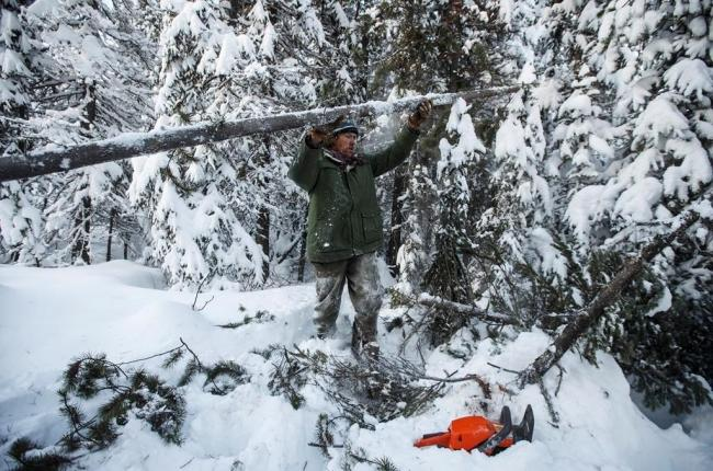 A supporter of the Wet'suwet'en hereditary chiefs and who oppose the Coastal GasLink pipeline work to set up a support station at kilometre 39 just outside of Gidimt'en checkpoint near Houston B.C., on Jan. 8, 2020. Photo by The Canadian Press