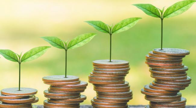 Could investments to tackle our climate emergency be deployed as quickly as the financial aid to help cushion COVID-19's economic destruction? Photo by Shutterstock