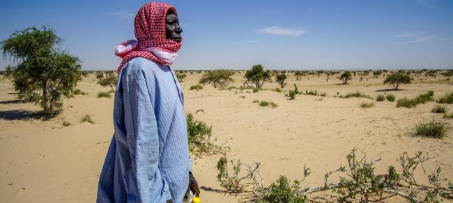 UNDP Chad/Jean Damascene Hakuzim Desertification threatens the village of Tantaverom. Mbo Malloumu has taken the initiative to plant acacia seedlings to rehabilitate the land. In the past 50 years, Lake Chad basin shrank from 25,000 square kilometers to 2,000square kilometers.