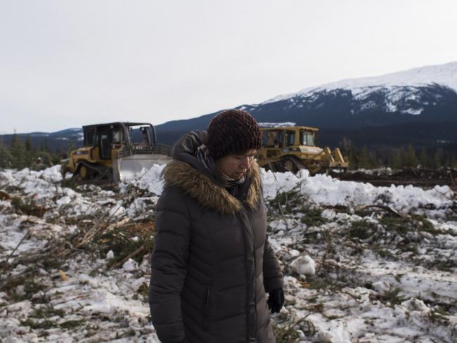 Brenda Michell, Unist'ot'en house member, surveyed damage to a Unist'ot'en trapline, bulldozed through on Jan. 27, 2019. Photo by Michael Toledano