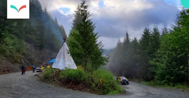 The first camp on Caycuse Main, before an RCMP raid. Michael Simkin, May 18, 2021.