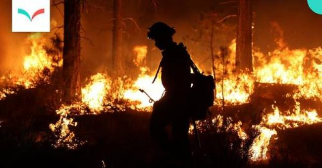 Photo: Firefighter working the Dixie wildfire in California, taken August 2021. (California Department of Forestry and Fire Protection / Flickr)