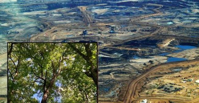 Teaser photo credit: Aerial photograph of open pit mine in the tar sands oil fields of Alberta, Canada.. Howl Arts Collective, Wikimedia, https://commons.wikimedia.org/wiki/File:Tar_sands_in_alberta_2008.jpg. Modified by author-supplied photo.