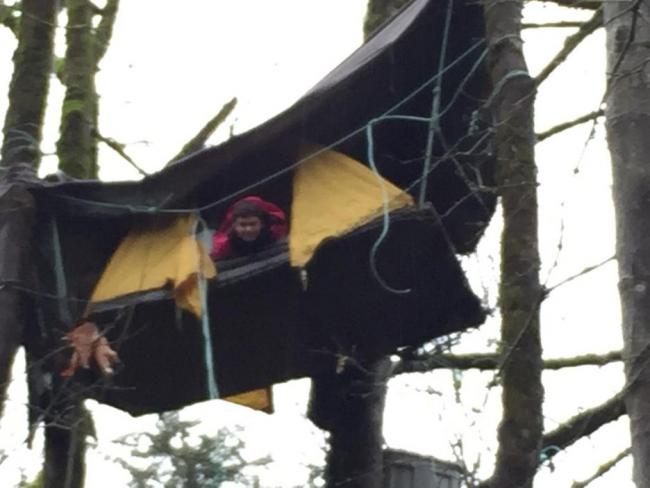 According to that protest camp's organizers, Timothee Govare, with the help of a small crew, has now climbed to a 20-metre-high perch near the same area and that he plans to remain.Submitte
