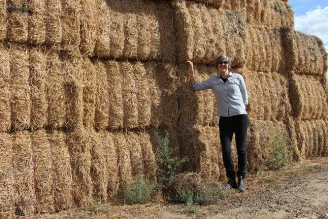 Canopy executive director Nicole Rycroft stands next to straw bales at Columbia Pulp Mill in Washington. Rycroft photo