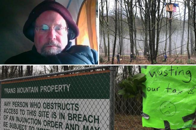 Clockwise from top left: SFU professor Tim Takaro, his treehouse protest site along the TMX route in Burnaby and a sign put up warning of an injunction order in effect. Twitter / Facebook / Protect the Planet Stop TMX