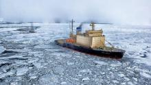 Exploration in the Arctic   -   Copyright  Canva