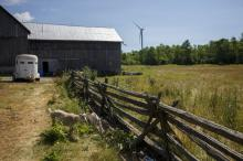 A farm in Prince Edward County, Ontario seen on July 19, 2018. Photo by Cole Burston