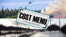 Cost menu for climate change adaptation
