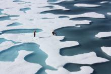 File photo of researchers on a NASA-funded mission examining melt ponds in the Arctic near Alaska, July 12, 2011. Photo by NASA