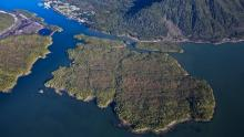 The proposed Pacific NorthWest LNG project would be built on Lelu Island, near eelgrass beds that nurture young Skeena salmon. (www.lonniewishart.com/Pacific Northwest LNG)