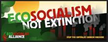 ECOSOCIALISM NOT EXTINCTION!