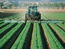 farming - fields - /Pxfuel