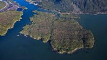Demonstrators, who built a two-storey house last fall and constructed a cabin this spring on the island, unveiled plans to build a cultural centre. (Pacific Northwest LNG)