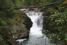 The falls on the Little Qualicum River