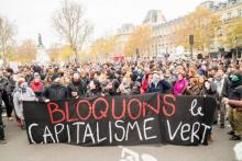 """""""We're blocking Green Capitalism"""", photo by Duc, via Flickr."""