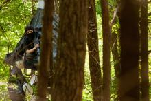 Mountain Valley Pipeline protester 'Nutty' looks out from her monopod in the Virginia forest on her 49th day 45ft above the ground. Photograph: Garrett MacLean for the Guardian