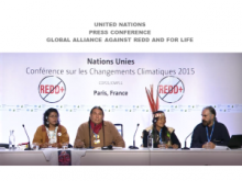 Press Conference indigenous rights