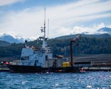 A salmon fish farm located in the waters just off the northern end of Vancouver Island.  RICK COLLINS/THE GLOBE AND MAIL