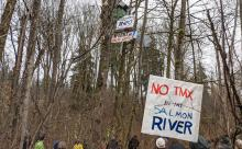 A protest was held near the Brunette River in Burnaby as Trans Mountain starts cutting down trees.Stop TMX